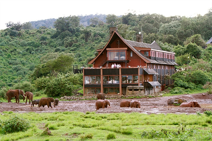 day-1-the-slopes-of-mount-kenya