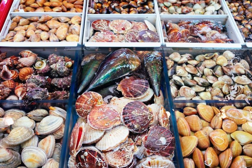 img-blog-korea-busan-jagalchi-market-1